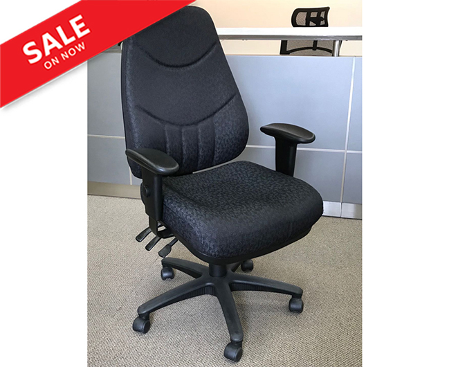 Ergomatic High Back Multi-Task Chair
