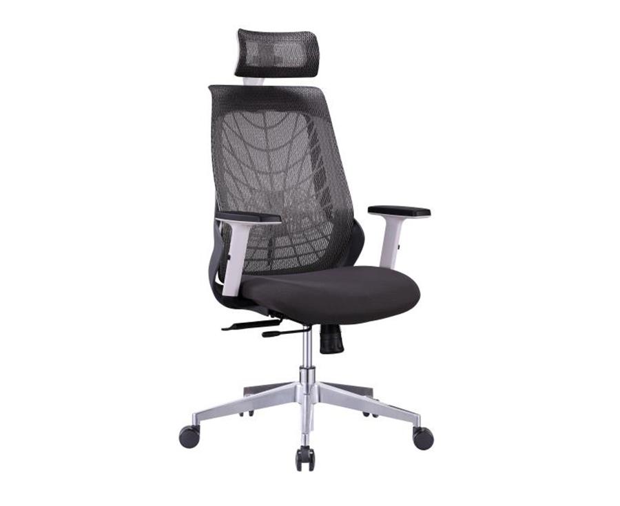 Ergonmesh Pro Chair