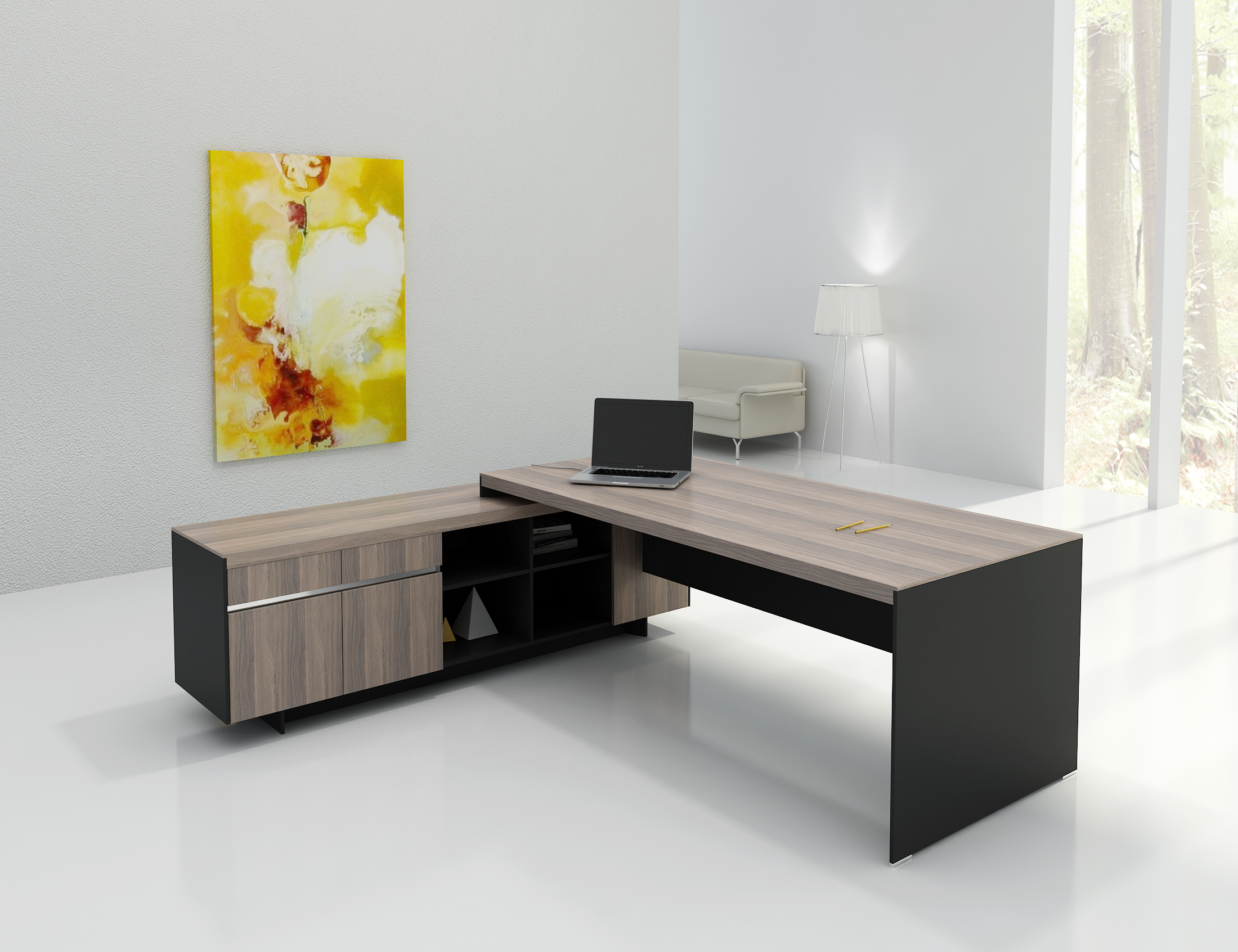 Executive Desk With Cabinet